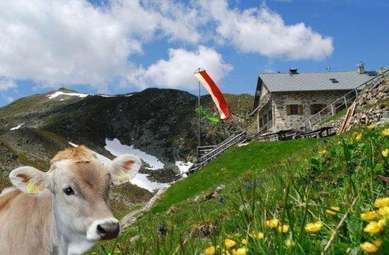 vacanza-sul-maso-stocknerhof-bressanone-alto-adige-2-2