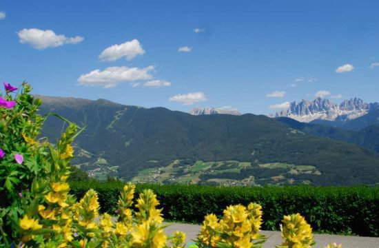 farm-holiday-stocknerhof-bressanone-south-tyrol (22)