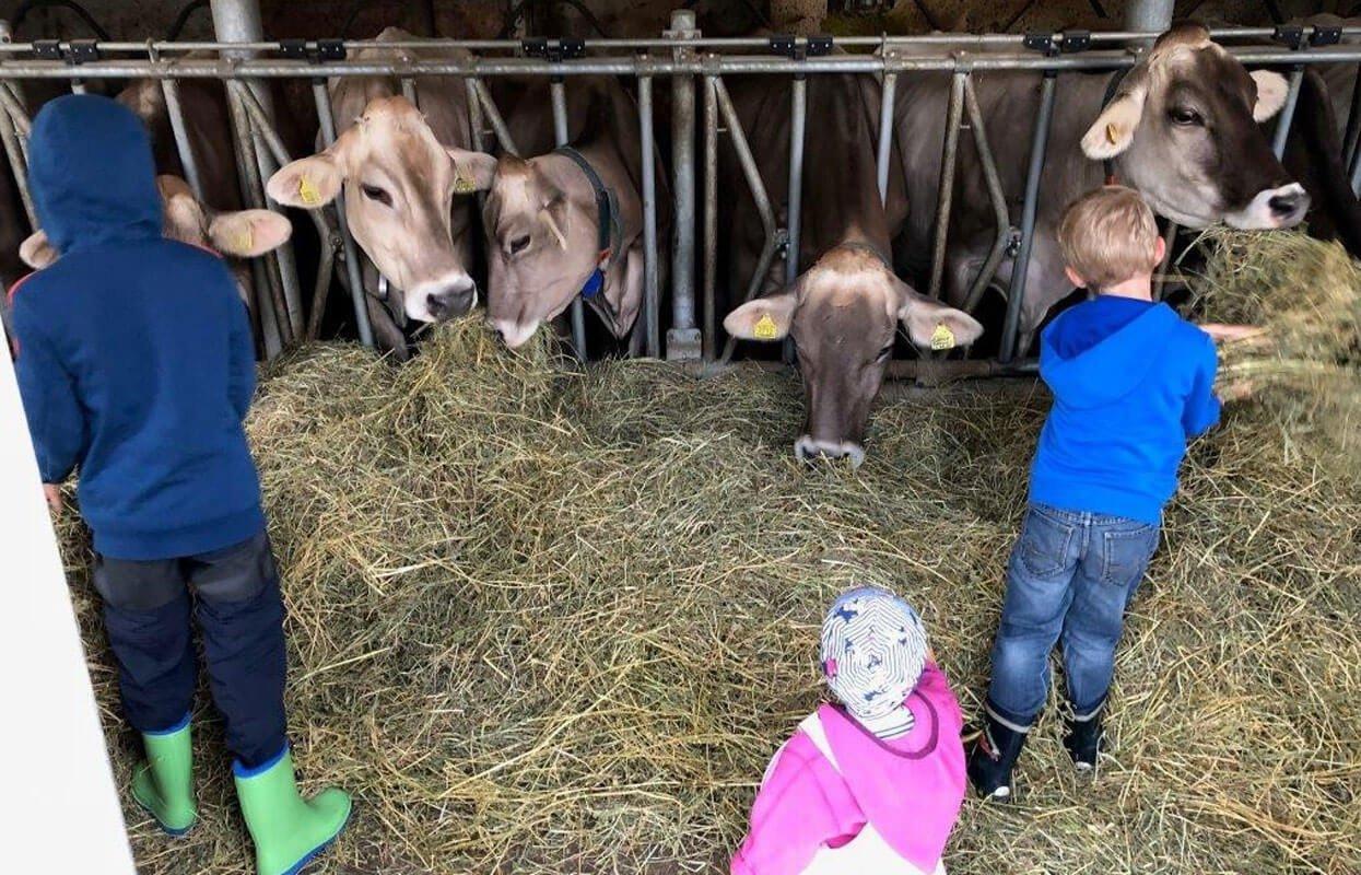 Kinderferien am Bauernhof, was kann schöner sein…